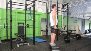 Alternating-Dumbbell-Decline-Reverse-Lunge-3