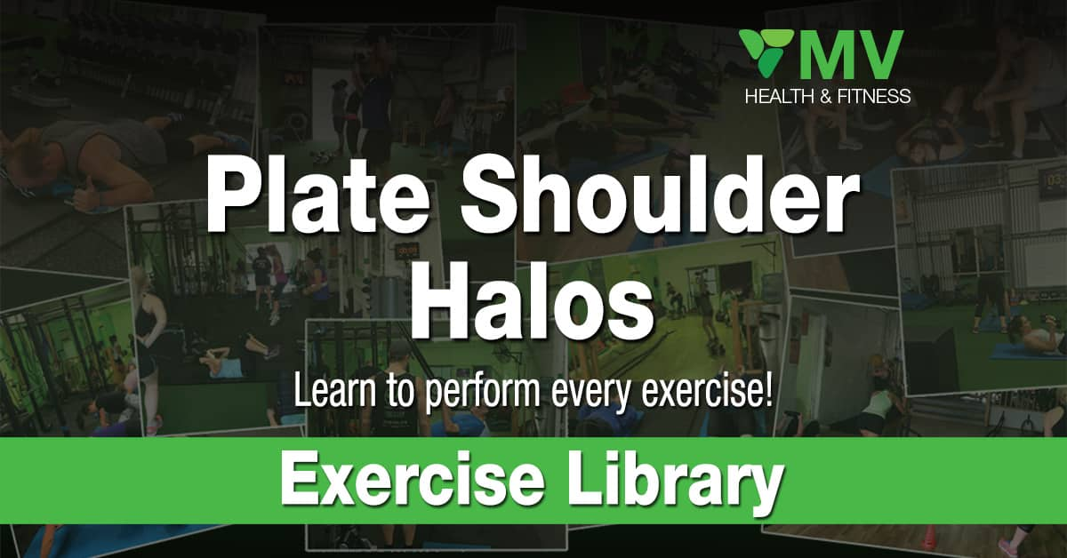Plate Shoulder Halos